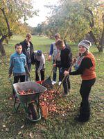 C klašu grupu skolēni ar pedagogiem piedaloties skolas teritorijas sakopšanas darbos.